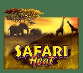 ทดลองเล่น SafariHeat