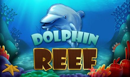 slotxo-Dolphin Reef