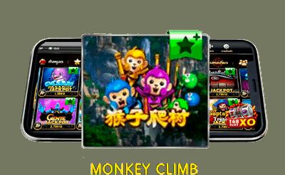 Monkey-climb